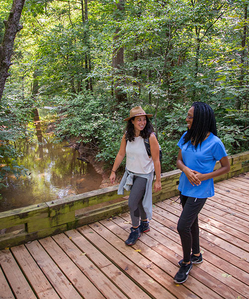 Two Women Smile at Each Other As They Walk Across a Foot Bridge over a Small Creek