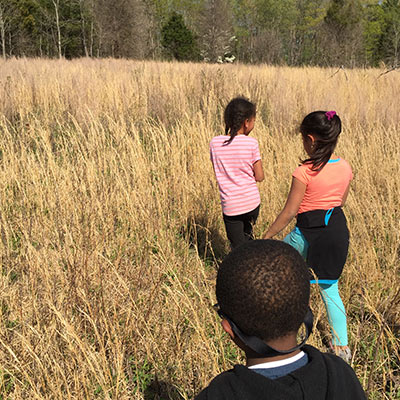 Two Young Girls and A Boy Walk Through Tall Grass